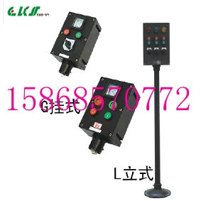 FZC-S 10A 220V/380V防水防尘防腐操作柱