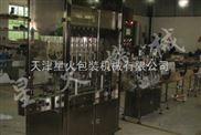 色拉油灌装机_调和油灌装机_天津派克龙全自动液体灌装机
