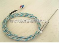 WZPK-198带引线热电阻