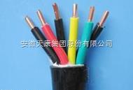 ZR-KVV阻燃非屏蔽控制电缆
