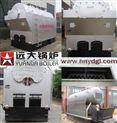 DZL2吨单锅筒燃煤热水锅炉