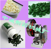 小型电动消毒剂压片机 价格