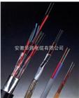 本安补偿电缆IA-KX-HA-FPFP 2*1.0