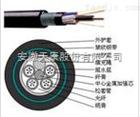 GYTY53-24B1鎧裝光纜