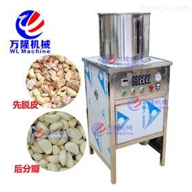 DSTP-10小型大蒜商用红葱脱皮机 不锈钢剥大蒜皮机