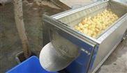 厂家直销各种型号胡萝卜清洗机
