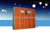 12门储物柜东莞亚津柜业供应16门智能电子寄存柜