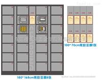 东莞亚津供应、一卡通寄存柜、IC存包柜可批发定做