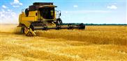 种类齐全、质量过硬的玉米收割机