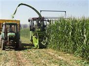 包膜机 饲料青贮机 牛羊面包草制作视频 面包草机械STB
