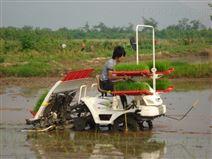 潍泰金王子2Z-6300乘坐式水稻插秧机