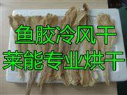 莱能鱼胶烘干机 低温冷风干燥设备 高效节能 质保一年
