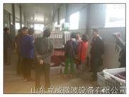贵州香辛料微波烘干杀菌设备特点-性能-价格-介绍-厂家