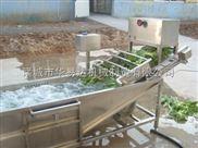华易达链板气泡喷淋蔬菜水果清洗机