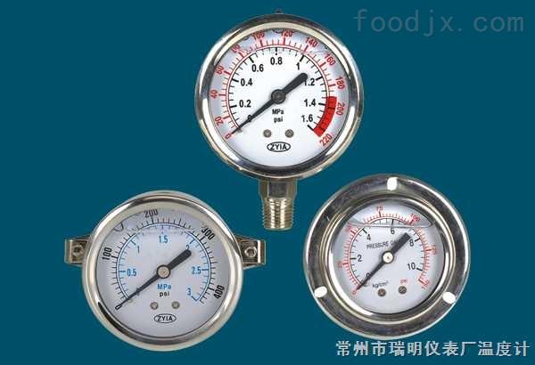 YTN-耐震压力表