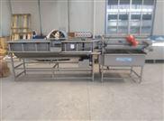 SCX-5000*-旋流式净菜加工生产线