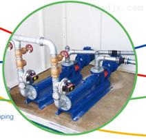 泥餅泵-CW082AL1R4/G412