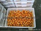 哈尔滨鱼豆腐油炸机价格