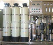 桶装水矿泉水制取设备 纯水设备厂家 江苏