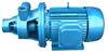 1W系列單級漩渦泵