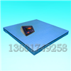 DCS-XC-B电子地磅(双层)